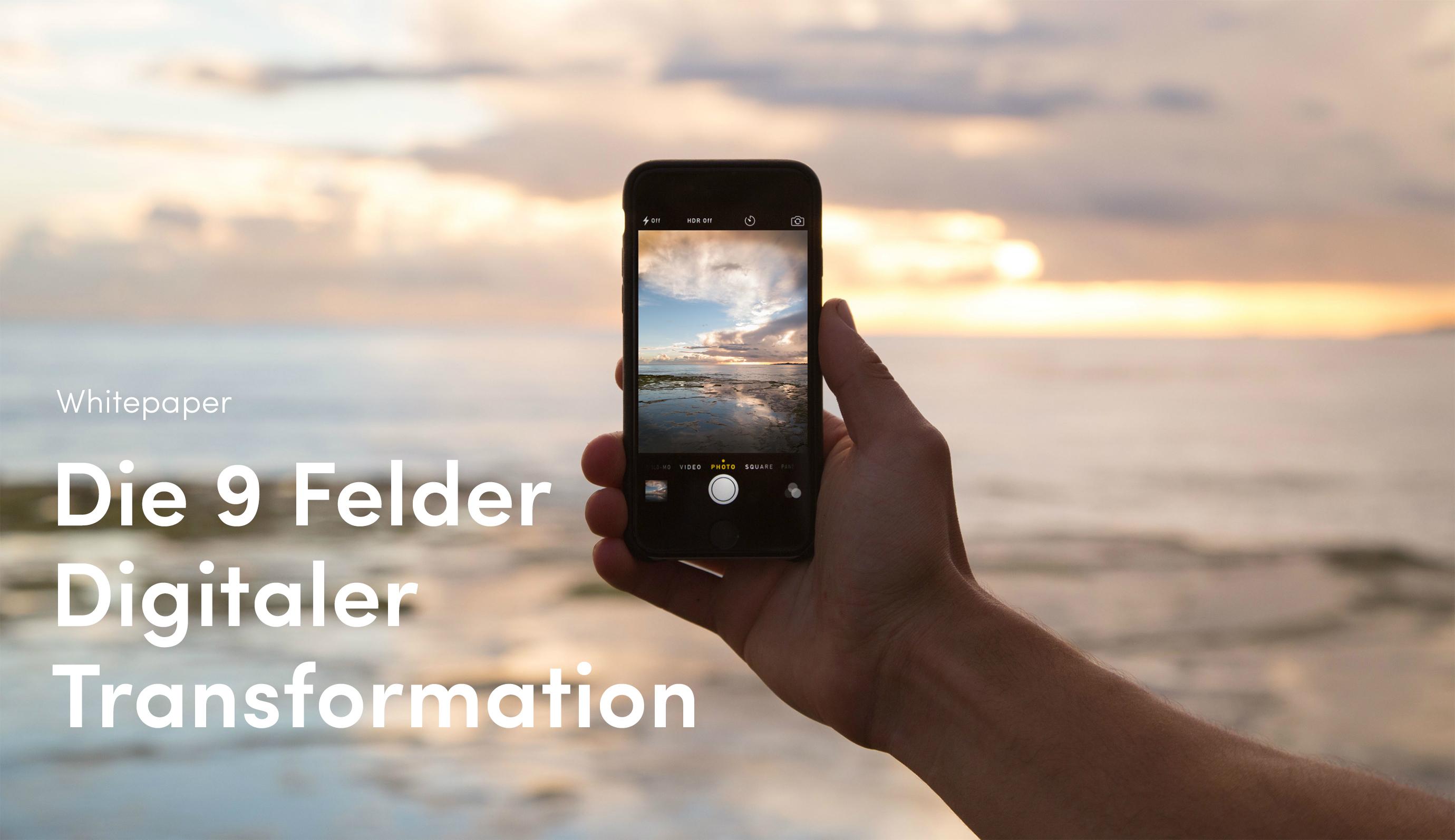 digitale-transformation-9-felder